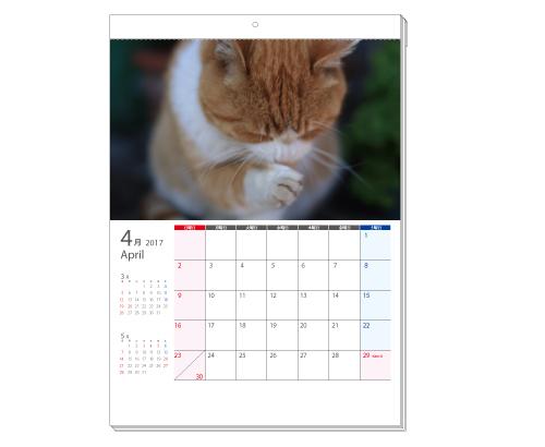 タンザック壁掛けカレンダー